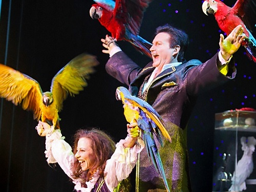 3 must see shows in branson this fall hamners