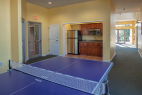 branson-palace-view-heights-activities-ping-pong