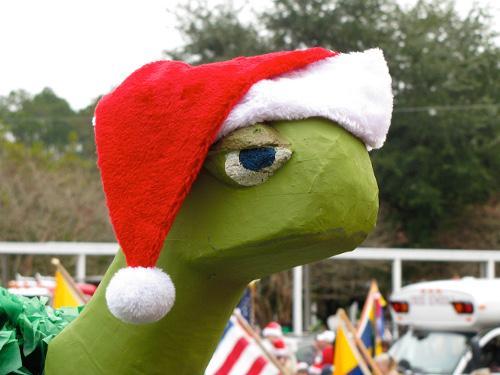 turtle-santa-hat