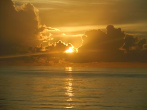 SAV beach Daniel Glanville Jacksonville FL Royal Floridian South2