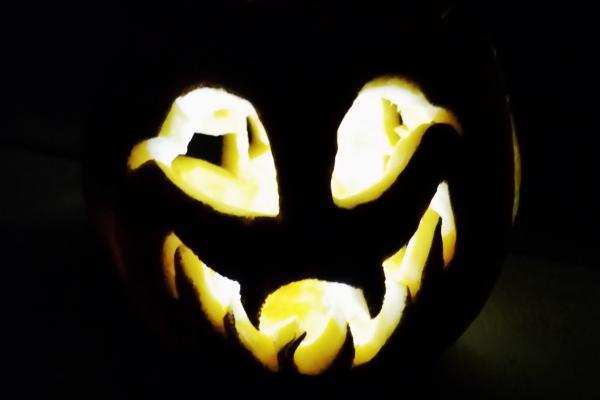 blog sz Pumpkins Lexi2