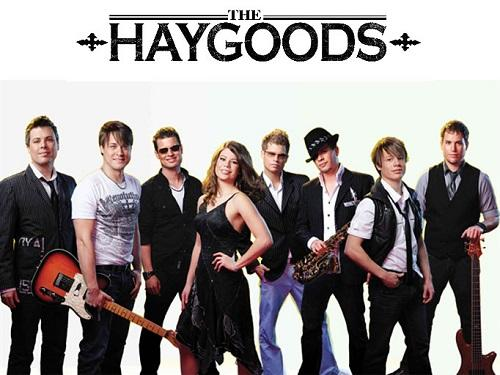 the haygoods 500 375