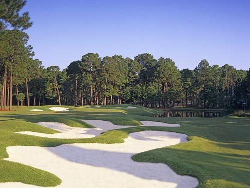 golf bear creek