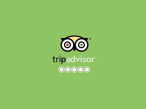 trip advisor 13 Must Have Travel Apps for 2017
