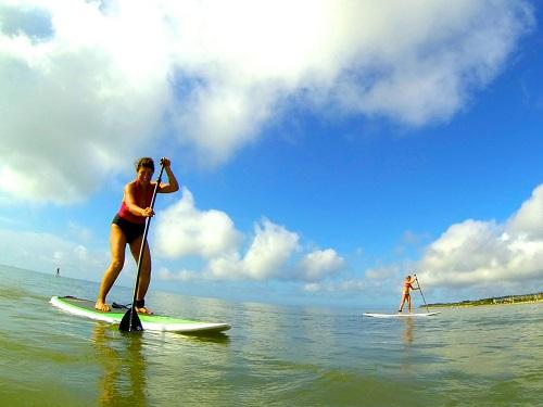 surf or sup stand up paddle board blog image