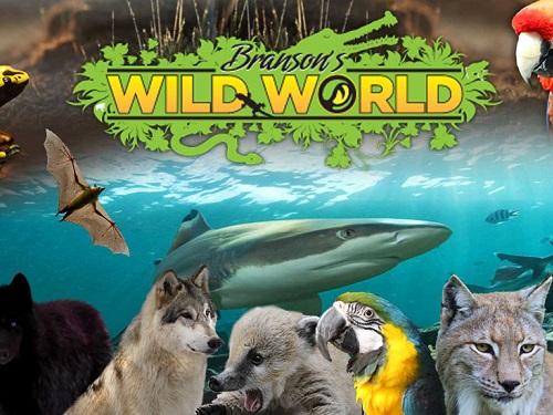 hidden treasures branson wild world
