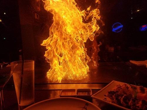 taste of the ozarks fire