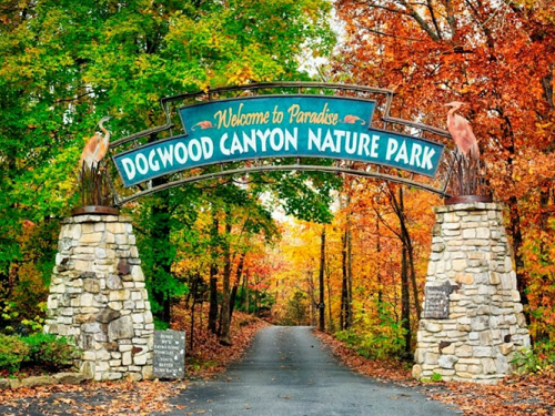 dogwood nature park fall in the ozarks spinnaker resorts blog 2017