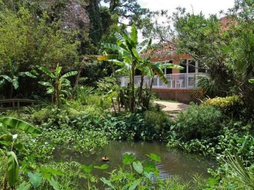 water ormond memorial musem gardens blog 2018 spinnaker resorts