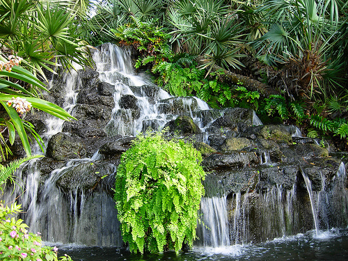 waterfall ormond memorial musem gardens blog 2018 spinnaker resorts