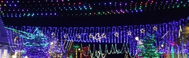Happy Holidays from Hilton Head Island!