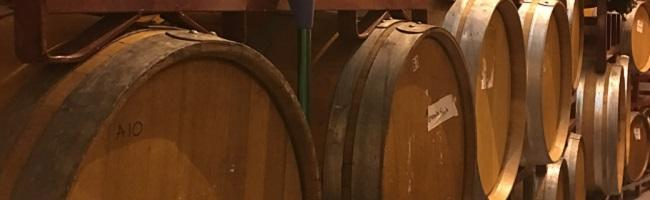 Five Wines You Must Try at Island Winery