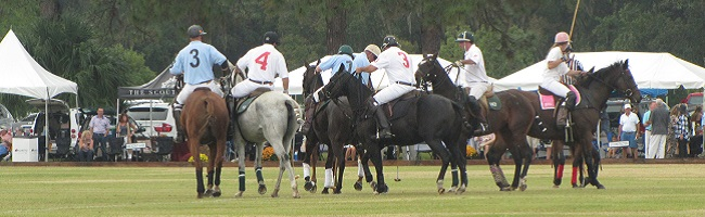 My Amazing Experience at the 24th Annual Polo for Charity