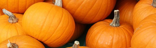 Spinnaker Employees Try Their Hand At Pumpkin Carving