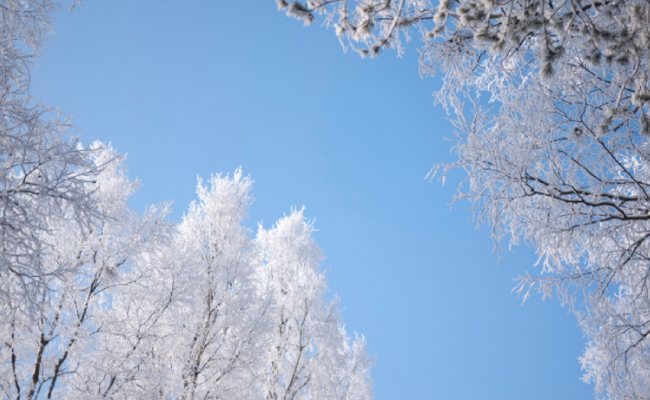 Winter Activities You Can't Miss in 2019