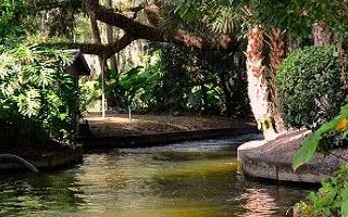 7 Reasons to Visit Washington Oaks Gardens State Park