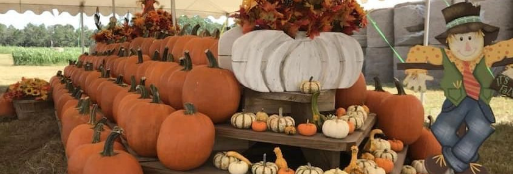 The Top 5 Fall Activities In or Near Ormond Beach, FL
