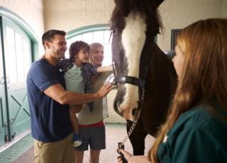 Meet the Animals at Busch Gardens in Williamsburg VA