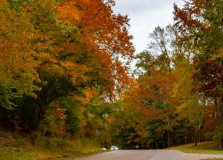 The Perfect Fall Getaway